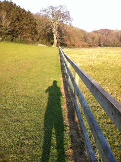 My long shadow points towards the Great Beech.