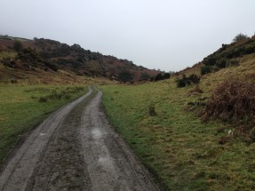 The road into the glen, which is also the start of Kevin's Way