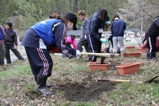 震災支援 農業支援 (10)