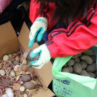 震災支援 農業支援 (6)