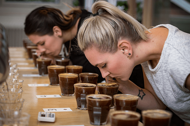 Kaya, Nordic Approach Cupping
