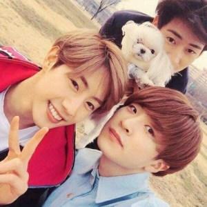 GOT7, Mark, Youngjae, Coco, K-Pop, Pets
