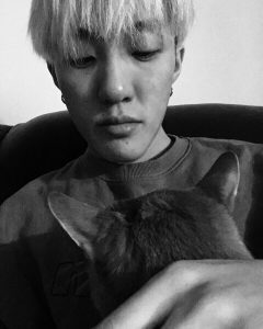 K-Pop, Pets, Zion.T, Namu, Cat