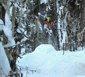 More hits in the trees