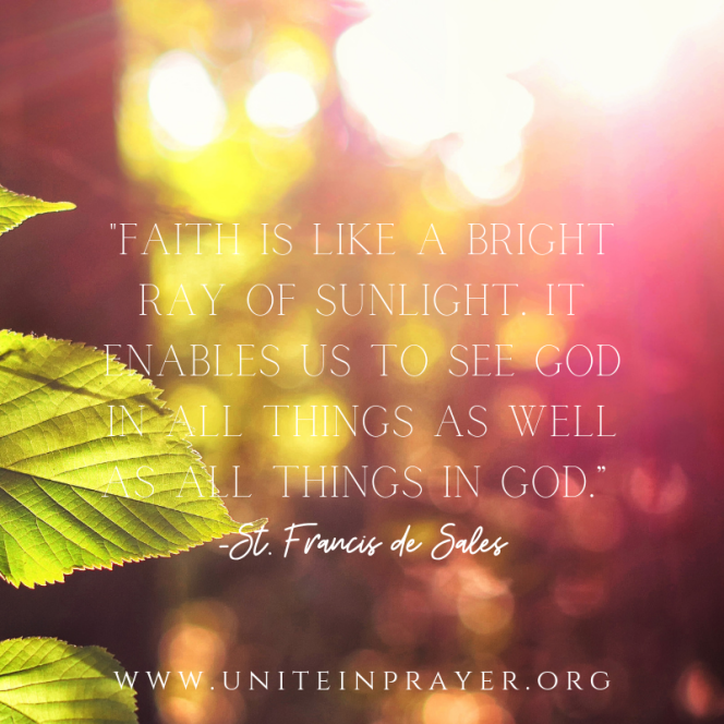 """aith is like a bright ray of sunlight. It enables us to see God in all things as well as all things in God."""" -St. Francis de Sales.png"""