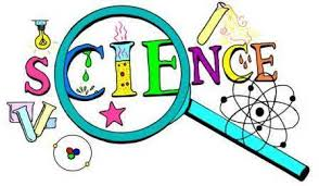 Follow Science in Best Interest of Child
