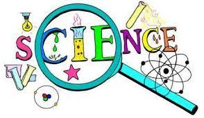 Follow Science in Best Interest of Child