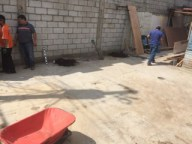 After several hours of moving plants and carrying buckets of stone we finally had a foundation where we could start the house.