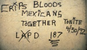 """""""Crips, Bloods, Mexicans Together"""""""