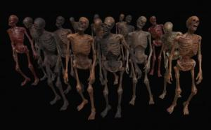 skeleton-zombies-low-poly-3d-model