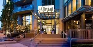 The Olivian