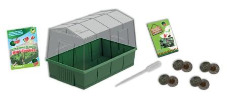 Invernadero de Frutas - Mini Sandías