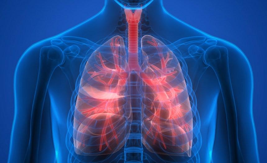 ¿Qué enfermedad se interpone entre tú y tu salud?