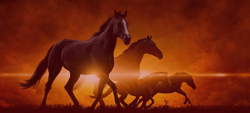 Jinetes del Apocalipsis: el caballo rojo