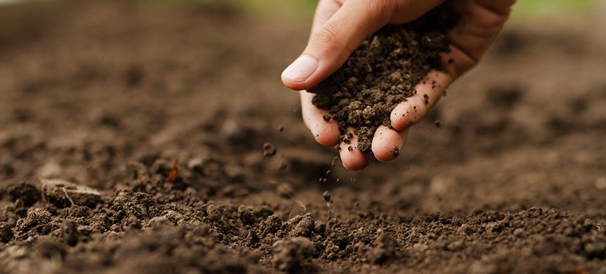 Costumbres de la Biblia: la relación con la tierra