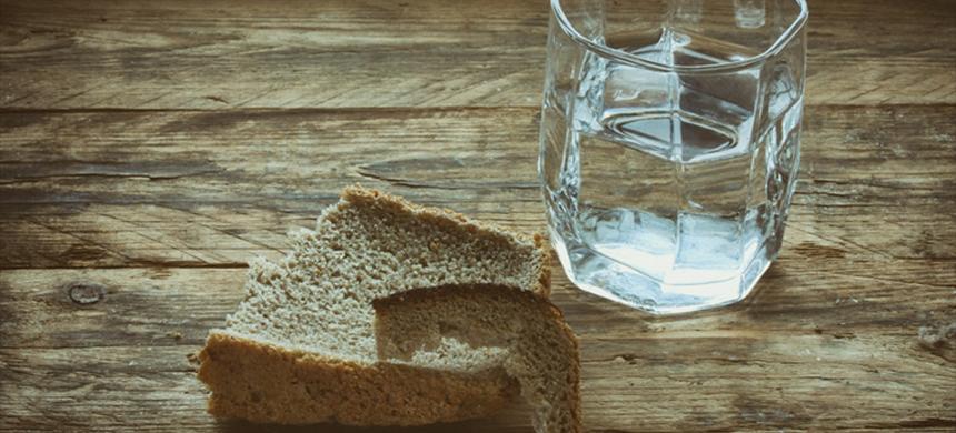 Refugio, agua y pan