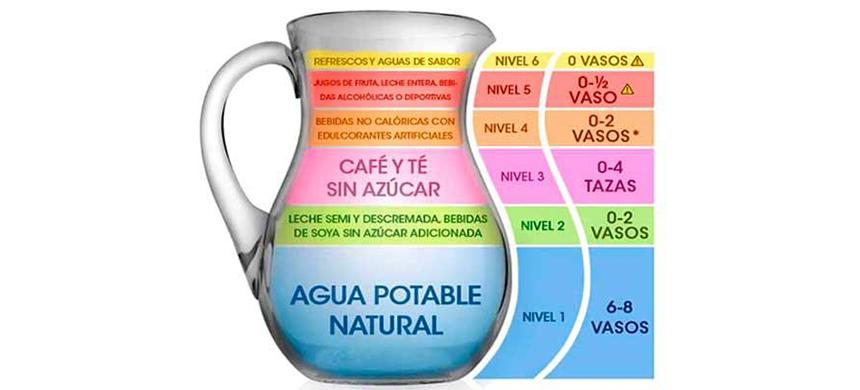 Jarra del buen beber: ¿sabes cuánto y qué líquidos necesitas consumir?