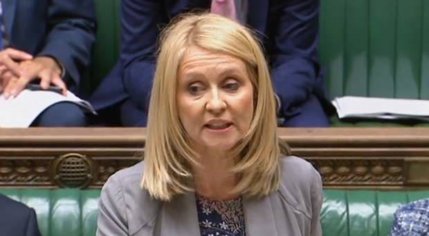 Image result for esther mcvey parliament
