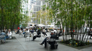 Urban landscape with shade trees and lots of casual seating with people sitting.
