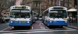 picture of two Sydney buses side by side waiting at traffic lights.