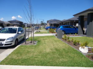Shows the street of a new housing development with driveways for cars but no footpath for people. Shows little understanding of accessibility at neighbourhood scale.