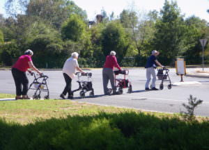 four older women using wheelie walkers are crossing the road in single file.