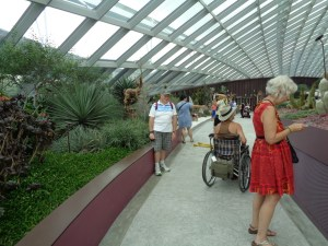 The photo was taken in the Flower Dome at Gardens by the Bay in Singapore. A woman in a red dress stands looking at plants and behind her is a man in a hat sitting in a wheelchair and moving along the path between the plants. The glass windows can be seen above.