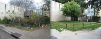before and after greening. vacant lot with overgrown vegetation and after with grass and a tree.
