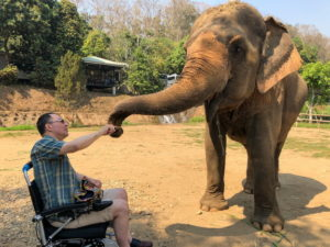 Martin Heng sits in a chair and there is an elephant closeby. He fist-bumps the elephant's trunk. ant using its trunk.