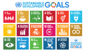 All 17 icons for the SDGs in an infographic.
