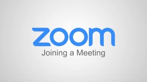 The Zoom logo in blue against a white background. Zoom for people with vision loss.