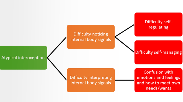 One of the slides showing atypical interoception and difficulty noticing body signals, and difficulty interpreting them.