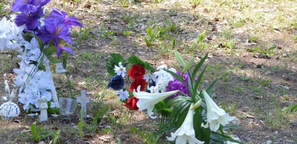 Hispano muere atropellado en Ashley Phosphate