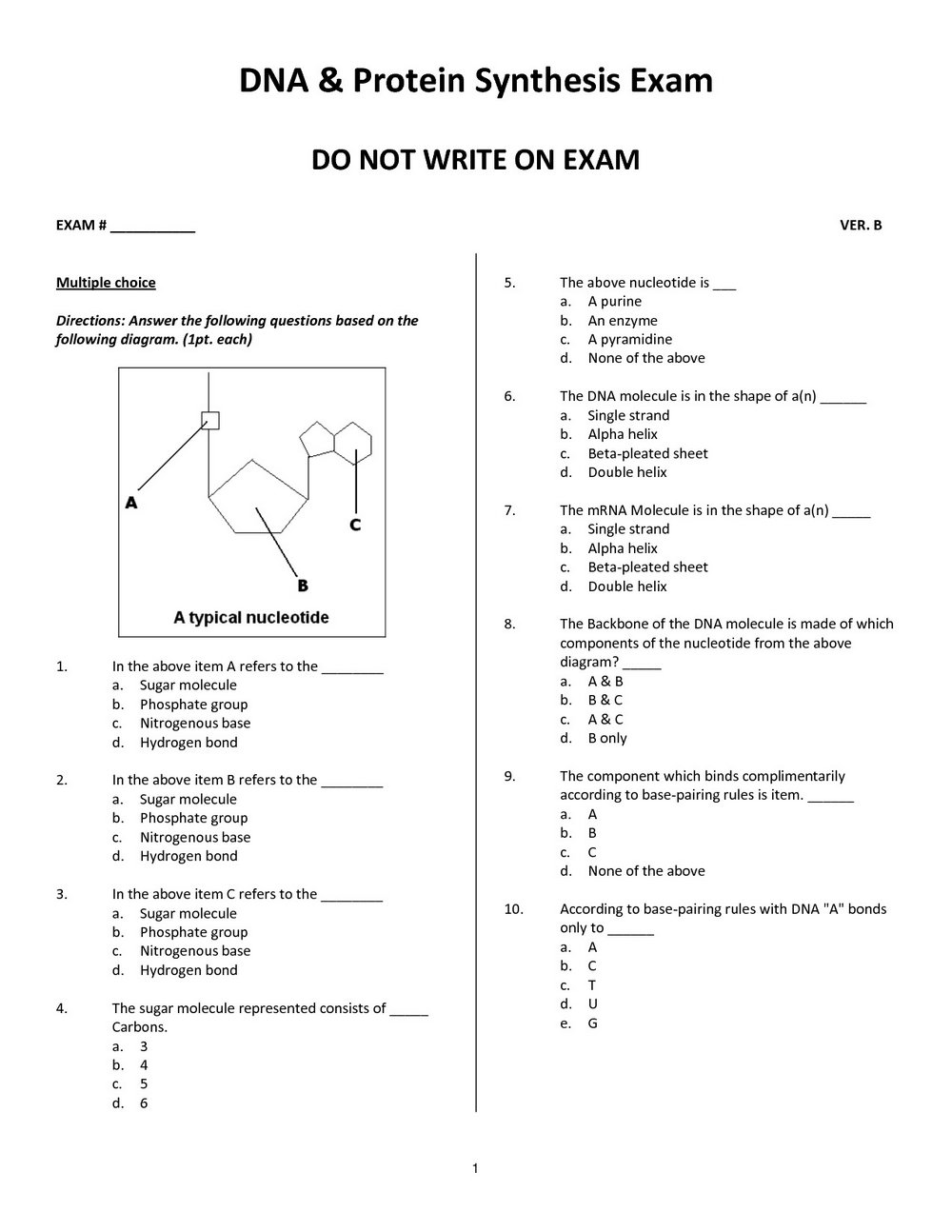 Dna To Rna To Protein Worksheet Answers