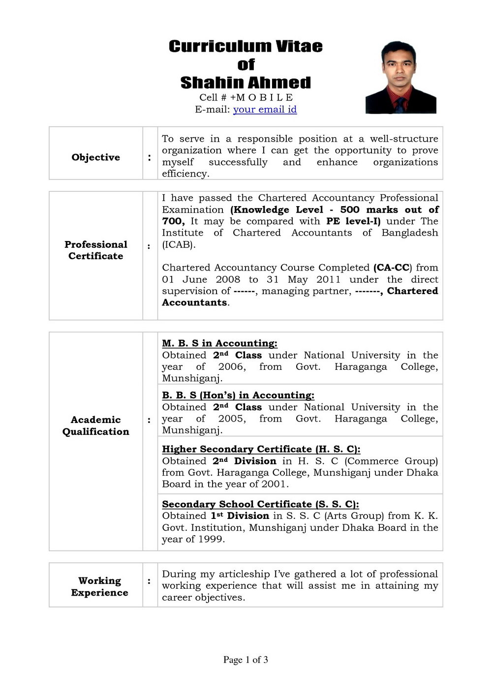 Professional Resume Word Format Free Download