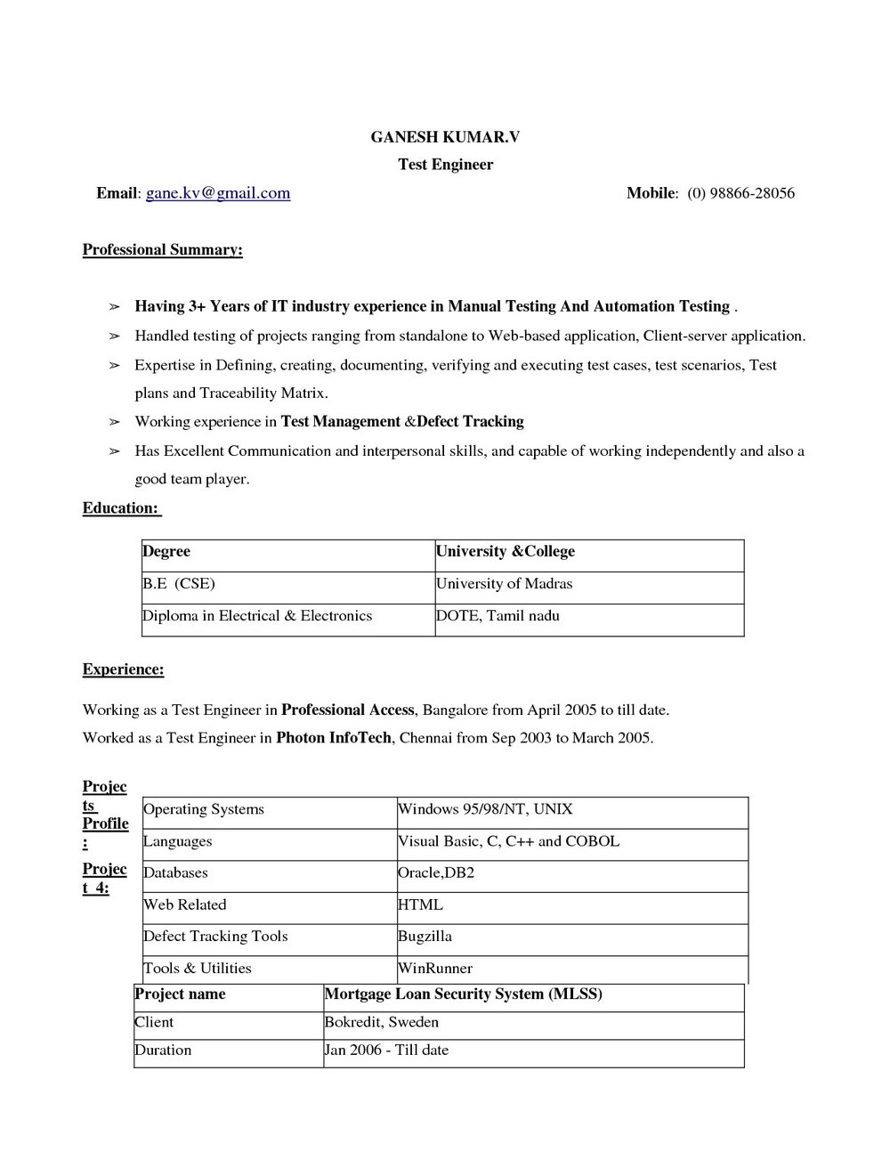 Resume Format Word 2007 Free Download