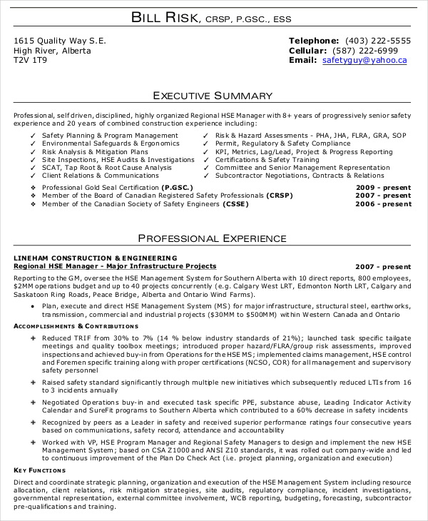 Resume Summary Examples For Executives