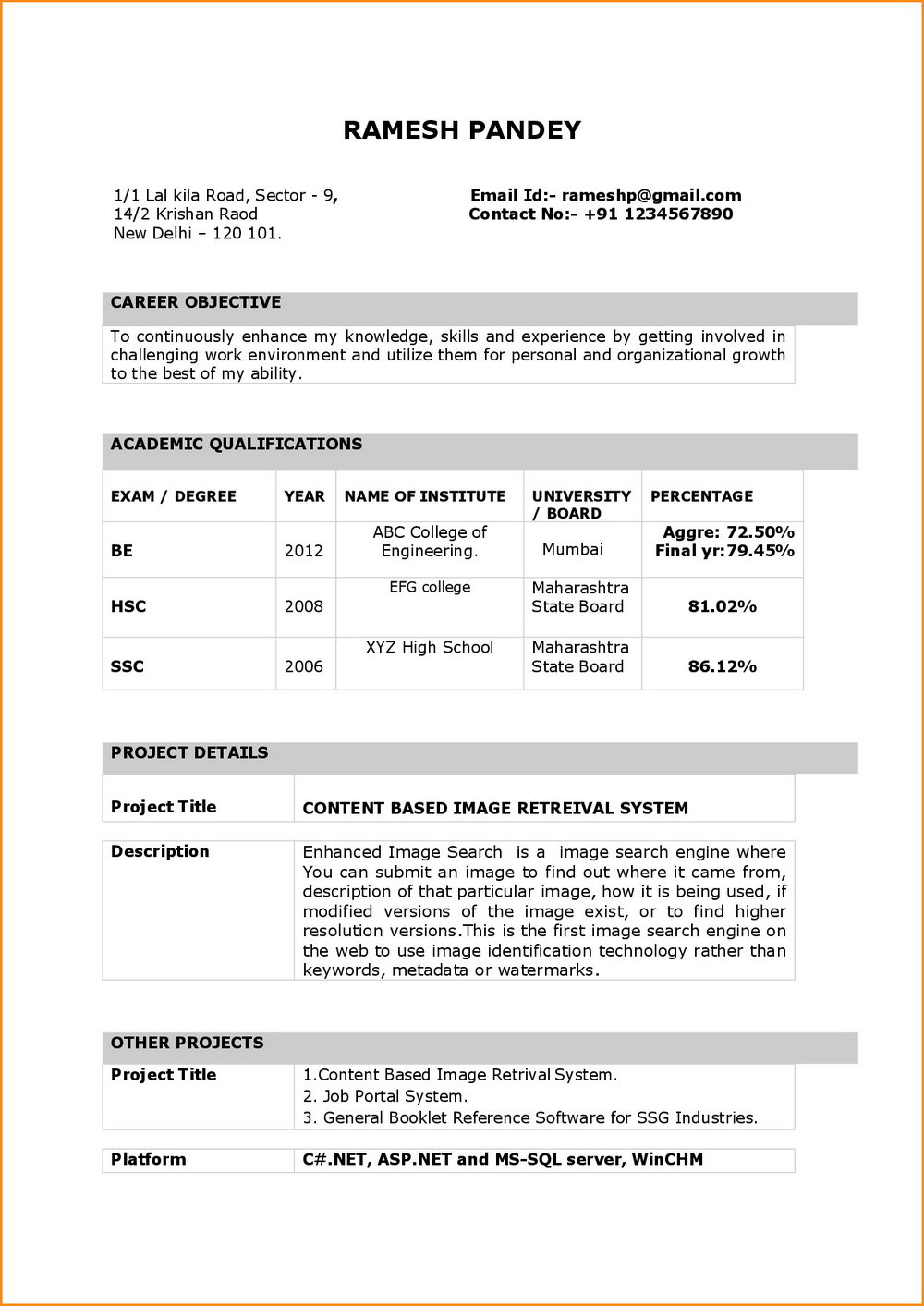 Simple Resume Format In Word Doc