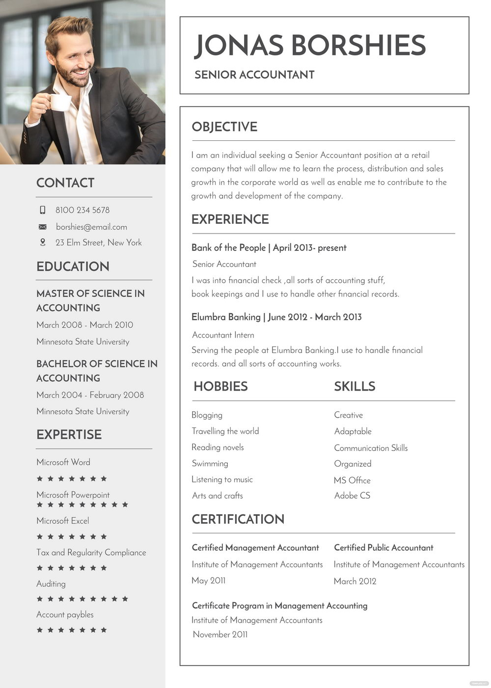 Resume Templates For Banking Professionals