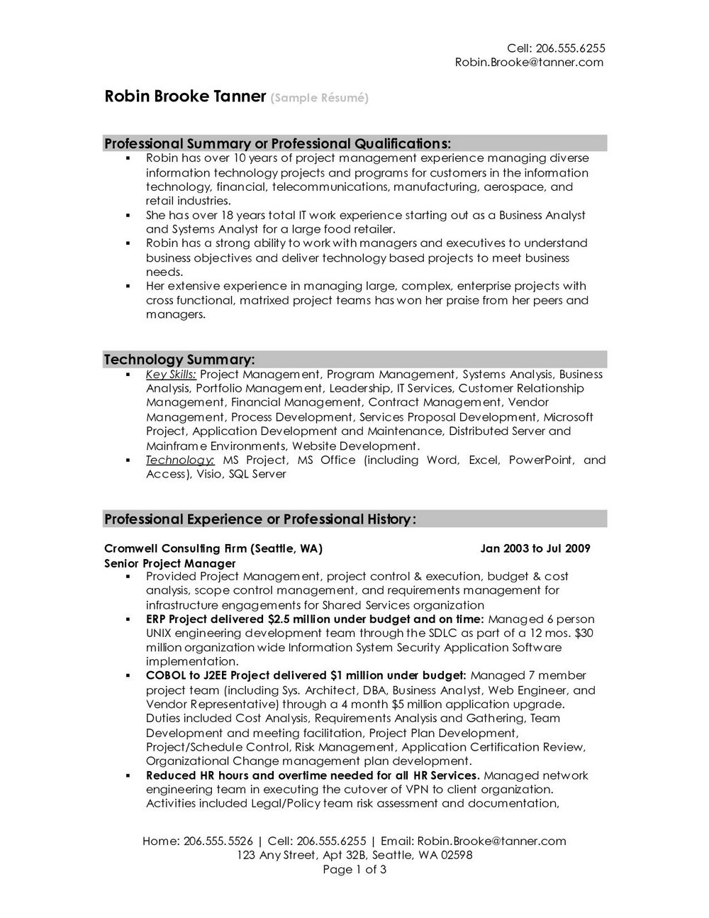 Resume Templates For Professionals