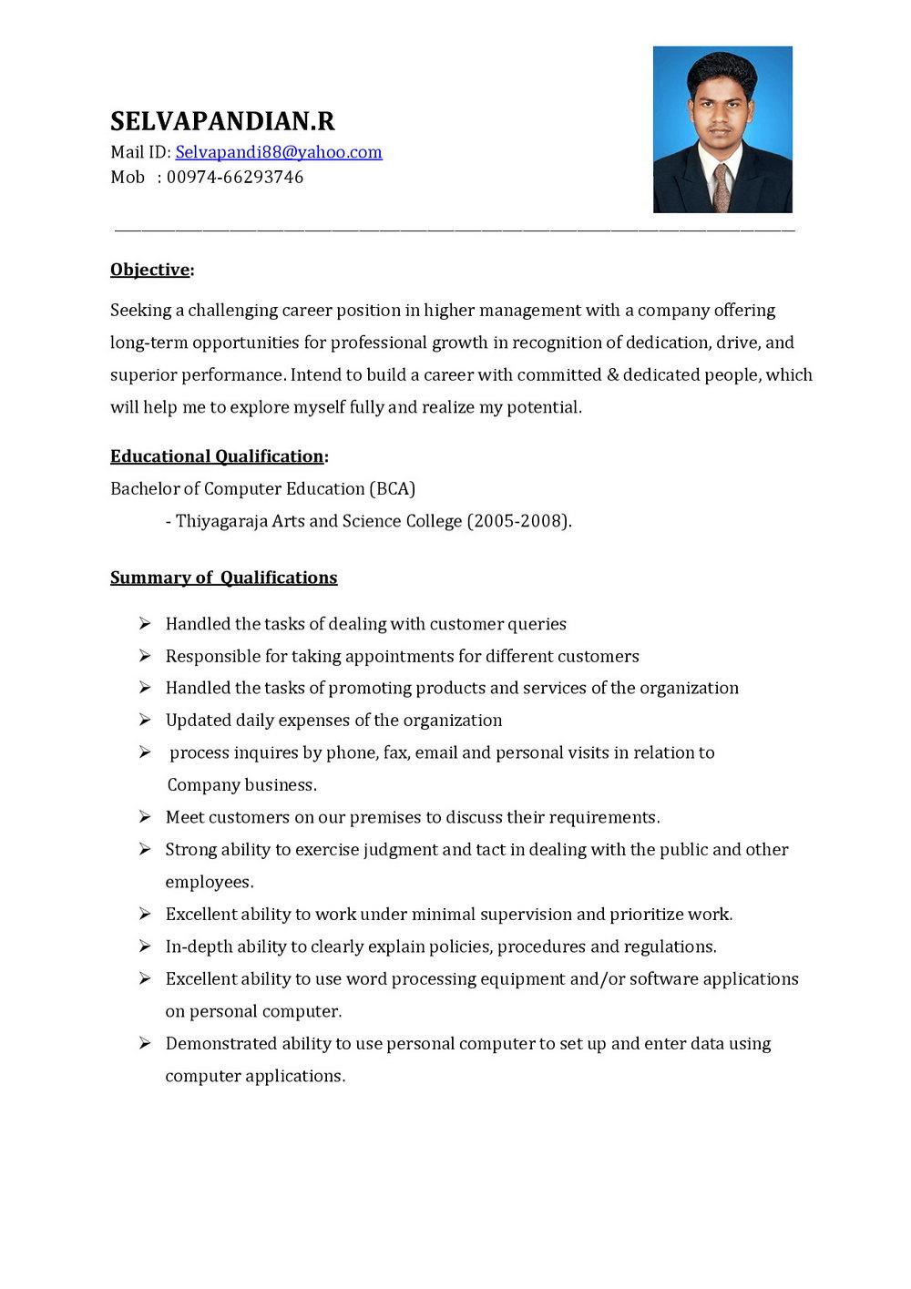 Sales Executive Resume Template Free
