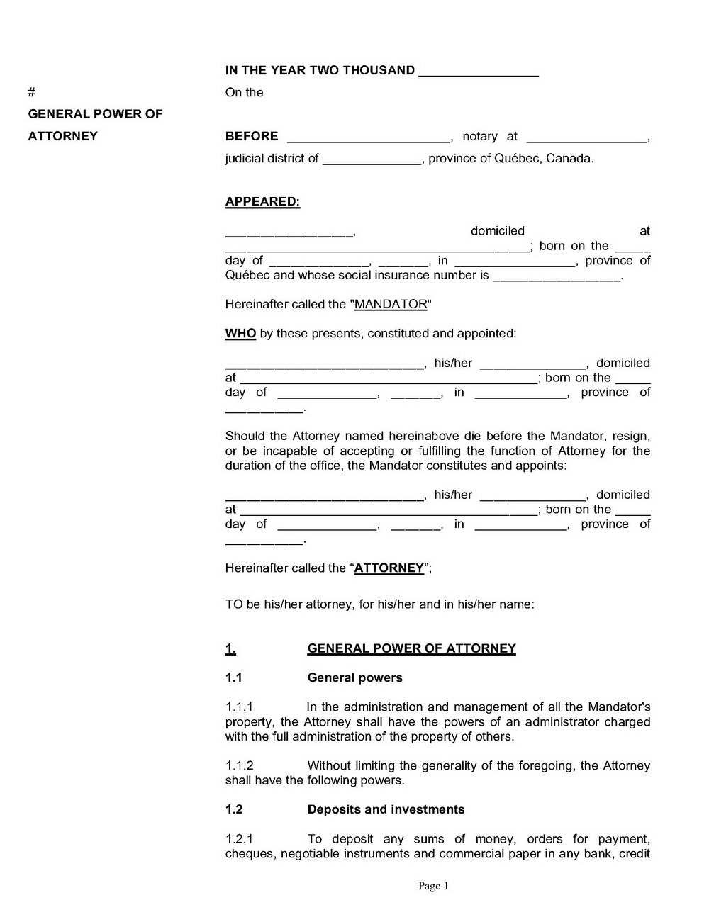Simple Power Of Attorney Form Mn