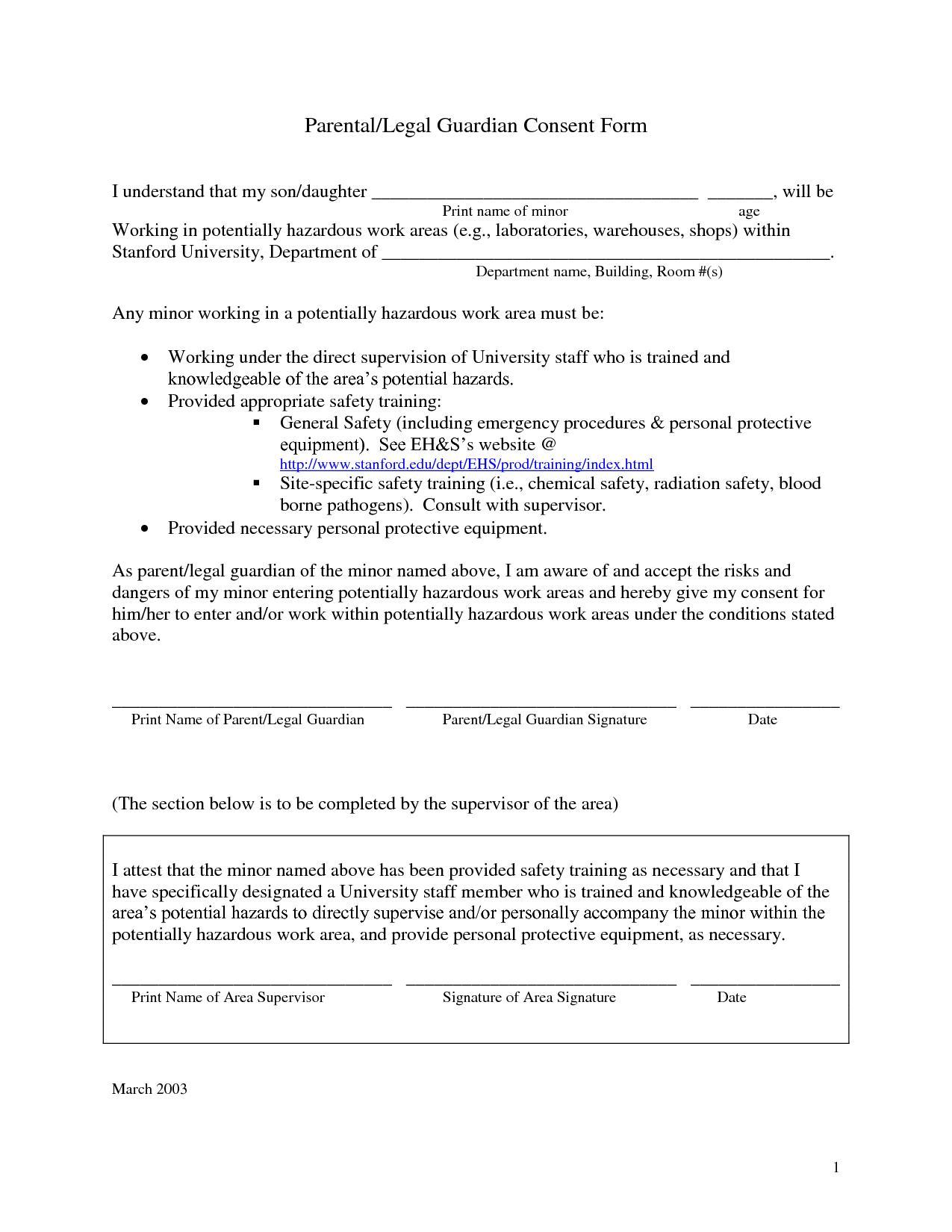 Legal Guardianship Forms Illinois