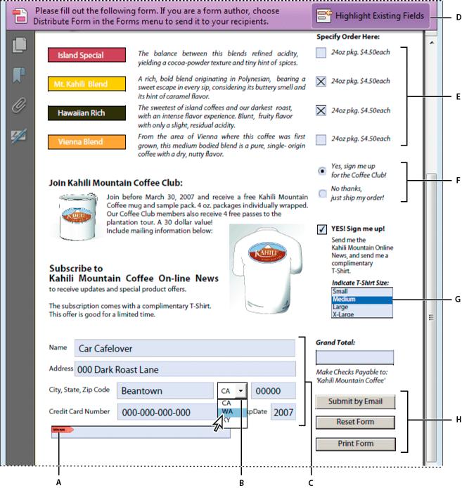 Adobe Form Filler Software