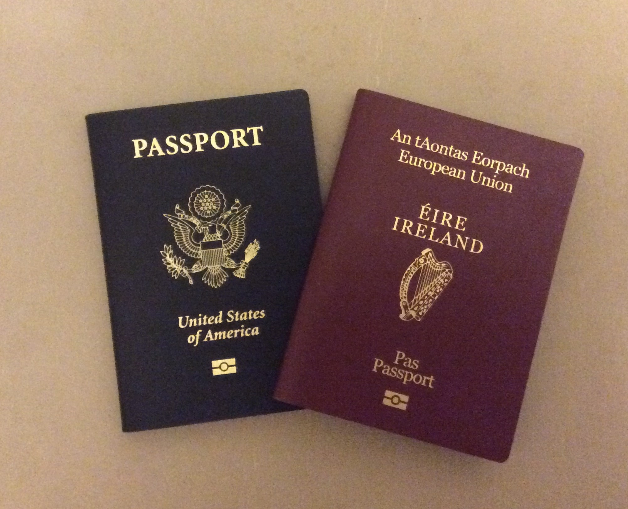 American Passport Renewal Form Ireland