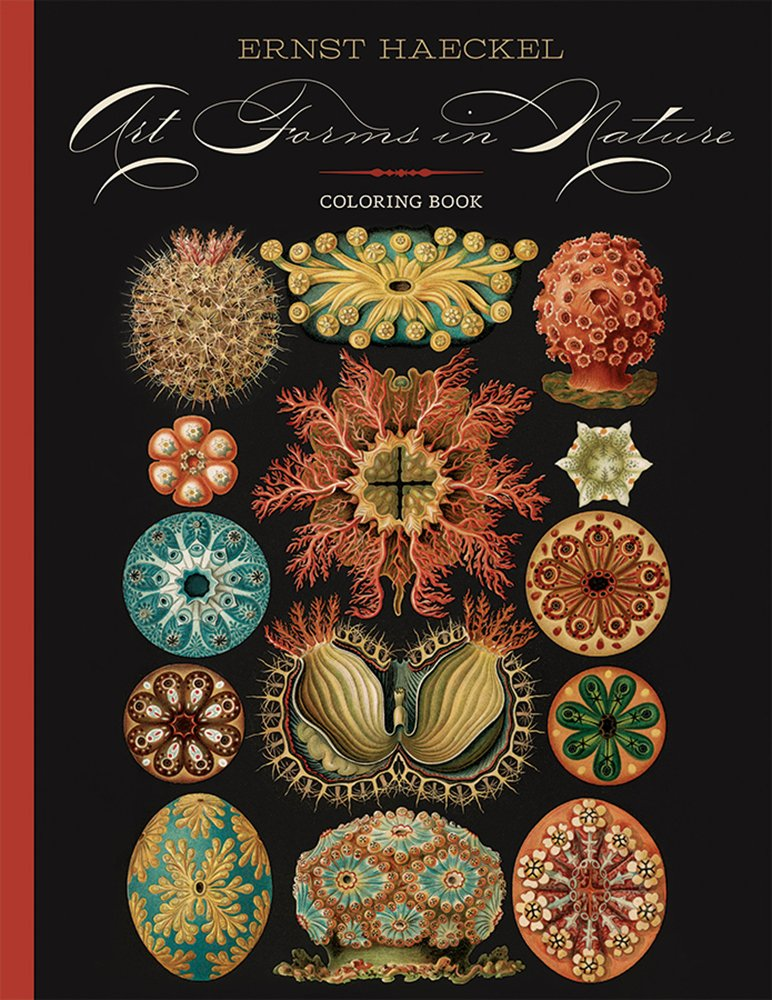 Art Forms In Nature Ernst Haeckel Book