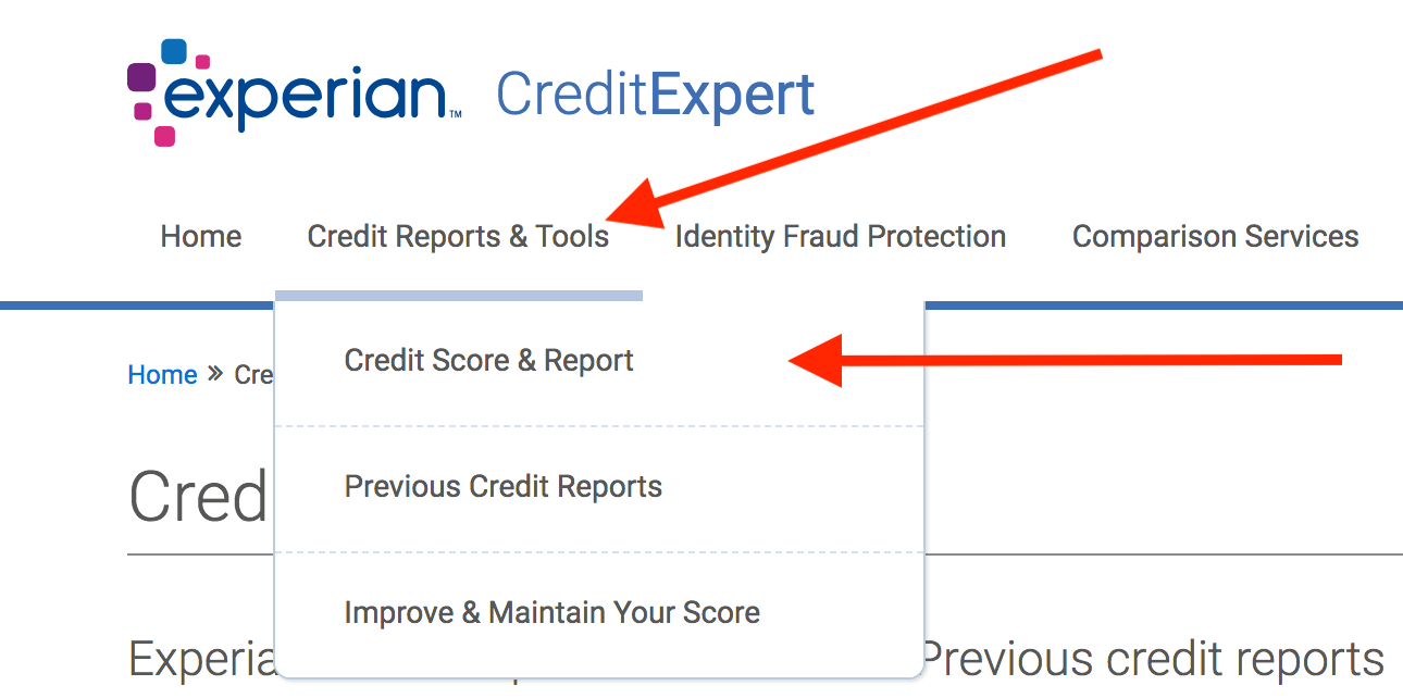 Experian Statutory Credit Report Application Form