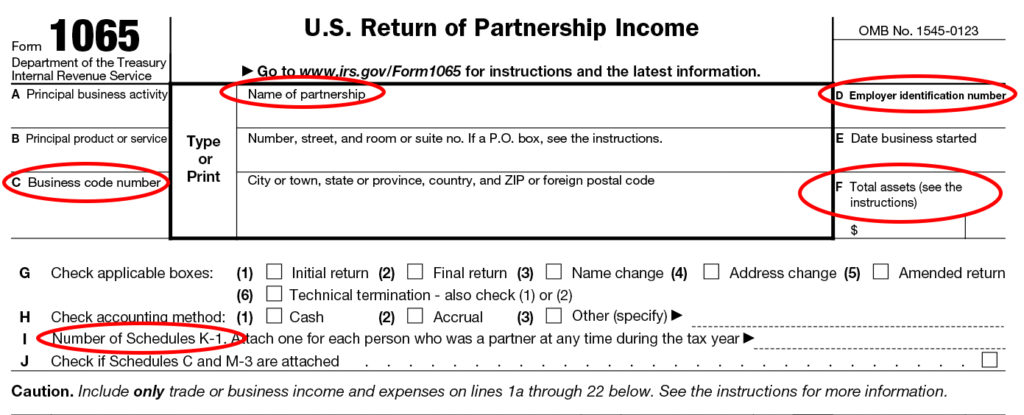 File Irs Form 1065 Online