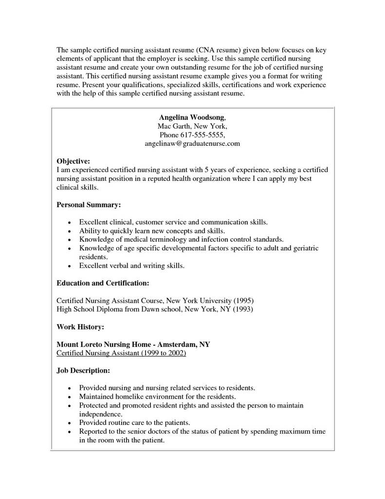Ghana Visa Application Form New York Awesome Resume Sample For Visa Application