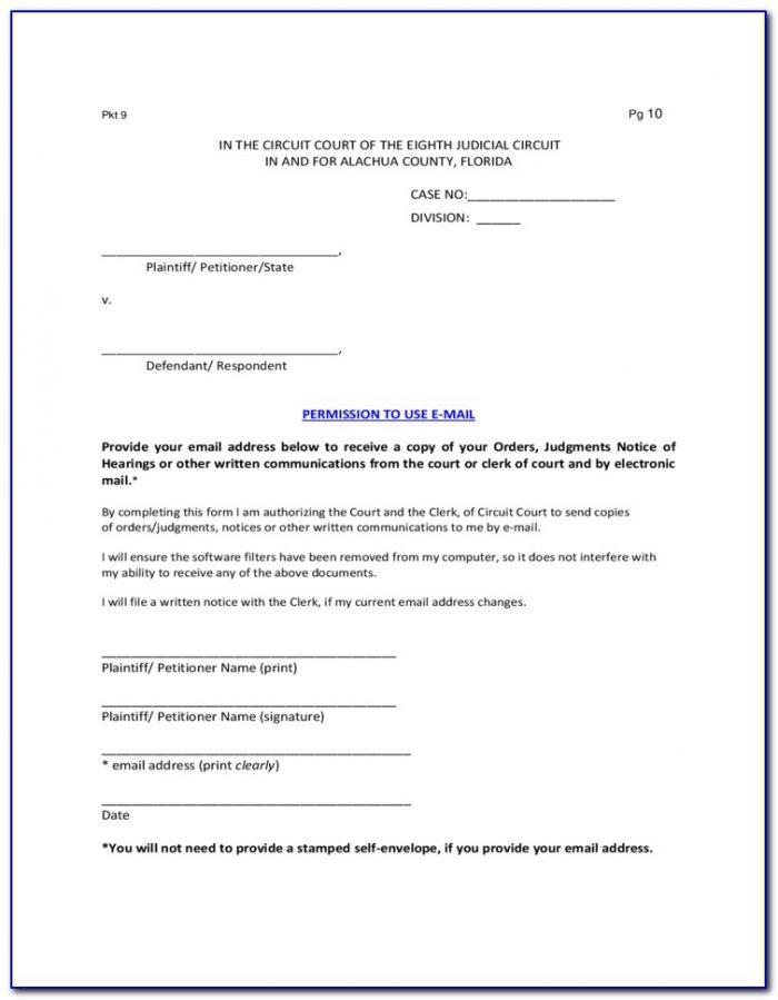 Guardianship Affidavit Form Florida